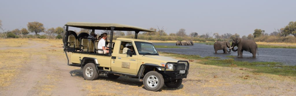 African safari in Botswana