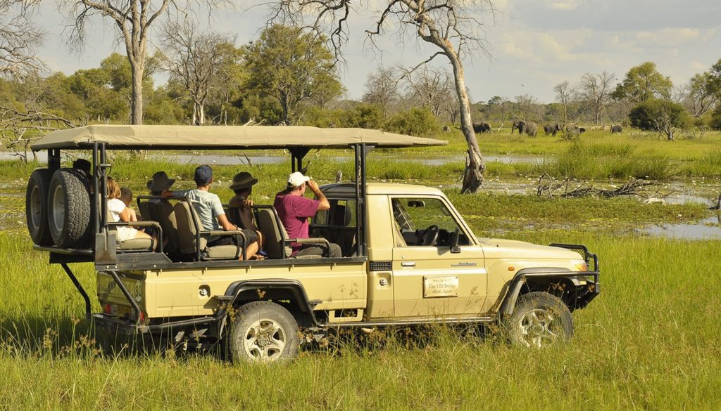 Matswere Botswana game drive
