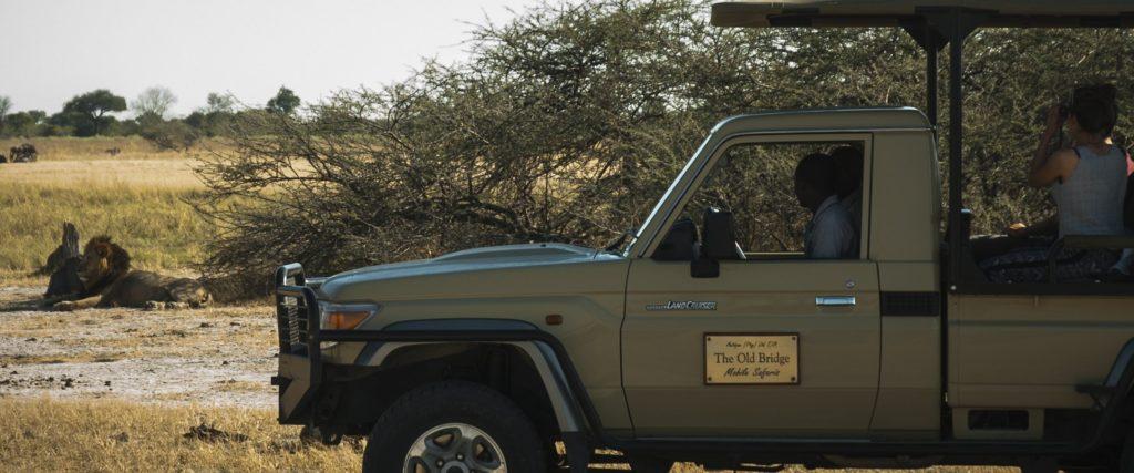 Big 5 on African safari in Botswana
