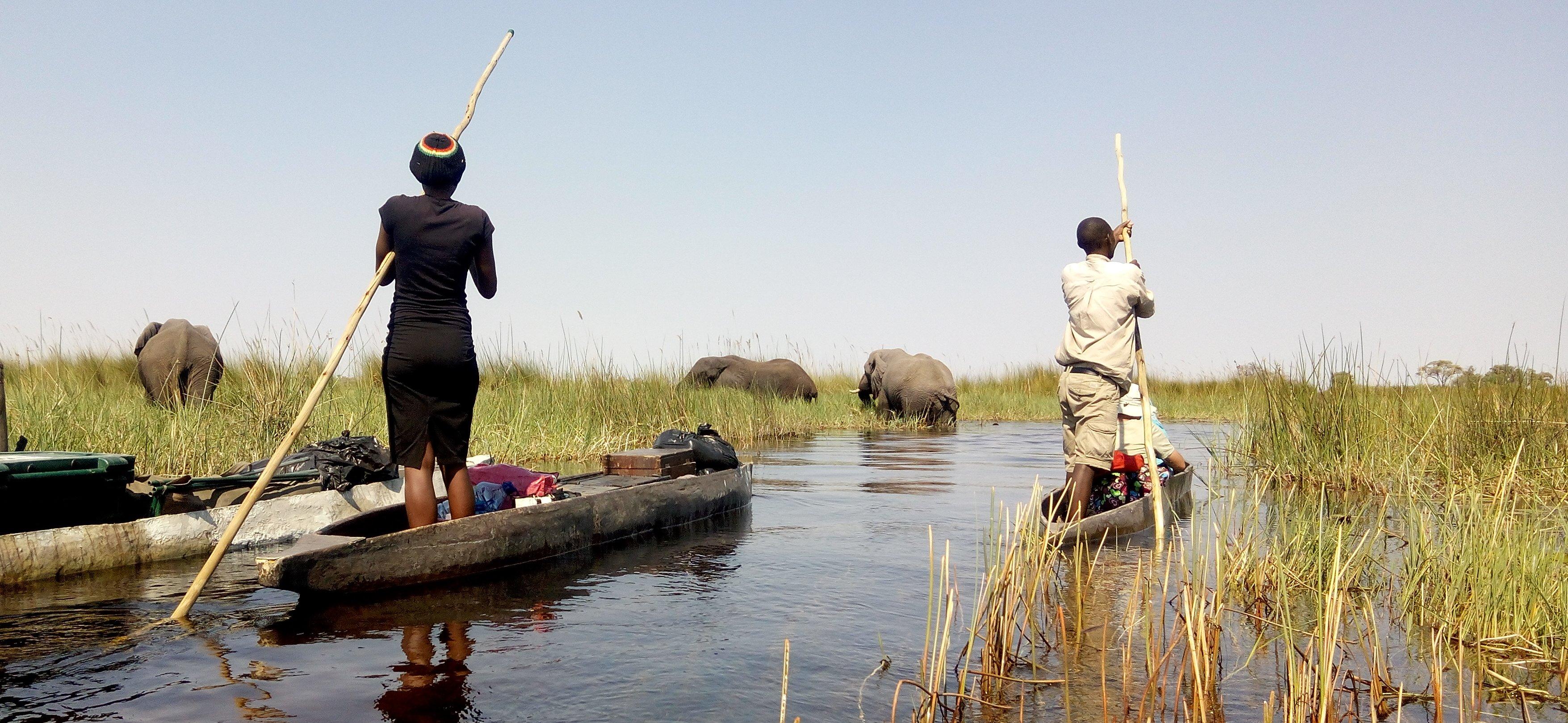 Okavango mokoro safari